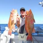 Tim Phoebe - Breaksea Cod