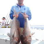 Mathew - Pink Snapper