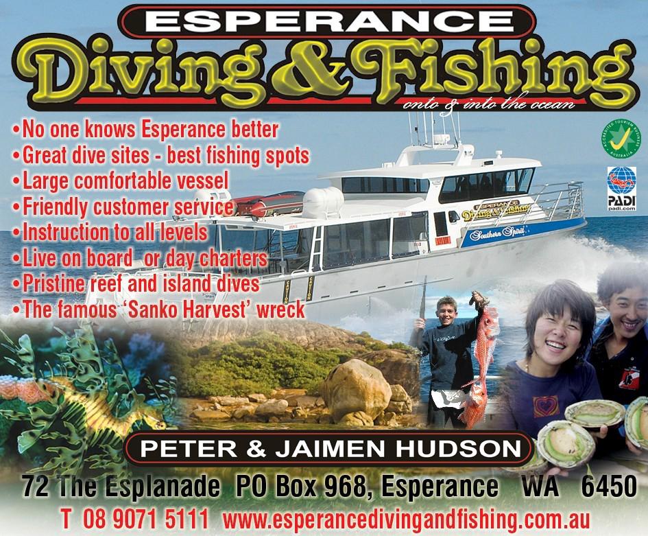 Esp Dive Fish Web Front Page