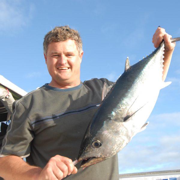 Colin Bluefin Tuna