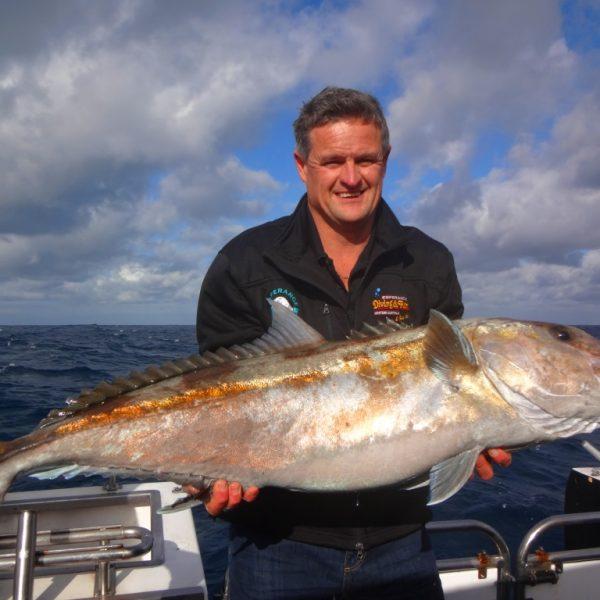 Colin Hampson Sampson Fish