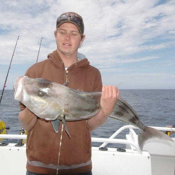 Sampson Fish