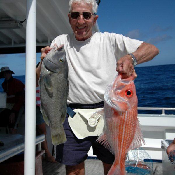 Blue Groper - Bight Red Fish