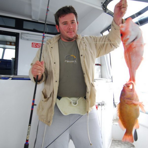Red Snapper & Breaksea Cod