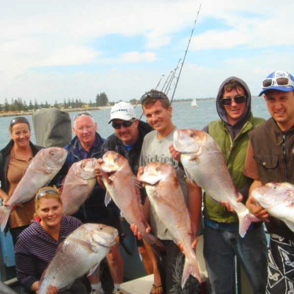 Pink Snapper 24.11.12